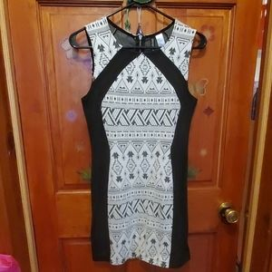 Bodycon Black and White Dress (never worn)